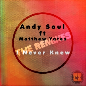Andy Soul feat. Matthew Yates - I Never Knew (The Remixes)